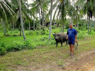 Strangers on Borneo