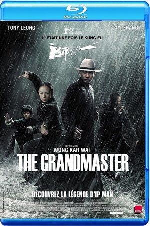 The Grandmaster BRRip BluRay Single Link, Direct Download The Grandmaster BRRip 720p, The Grandmaster BluRay 720p
