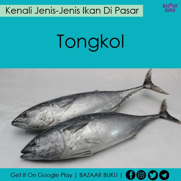 Jenis-Jenis Ikan Di Pasar