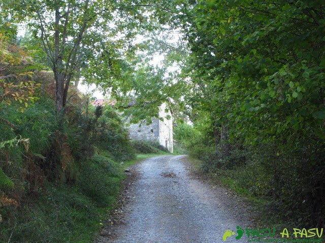Cabaña sobrela pista del Bosque de Cea