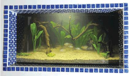 desain aquascape gaya biotop