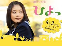 SINOPSIS Hiyokko Episode 1 - 156 Selesai