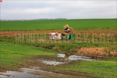 Дожинки-2011, трасса М6, дорога на Вильно, Гродно. Фигуры из соломы