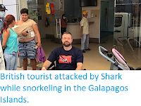 http://sciencythoughts.blogspot.com/2018/02/british-tourist-attacked-by-shark-while.html