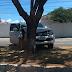 Caminhonete colidiu contra árvore na Hermes da Fonseca