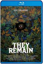 They Remain (2018) HD 720p Subtitulados