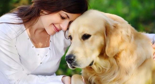 Perder a un perro duele más que un corazón roto