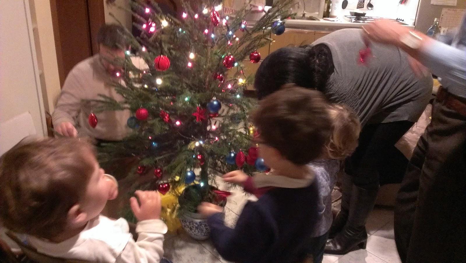 Albero Di Natale Vero Come Farlo Sopravvivere.Calepino Dei Bimbi Albero Di Natale Vero O Finto