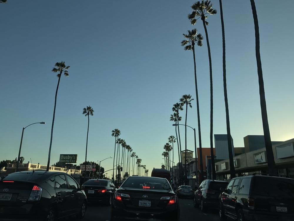 Laskettelua ja rantaelämää Kaliforniassa 19