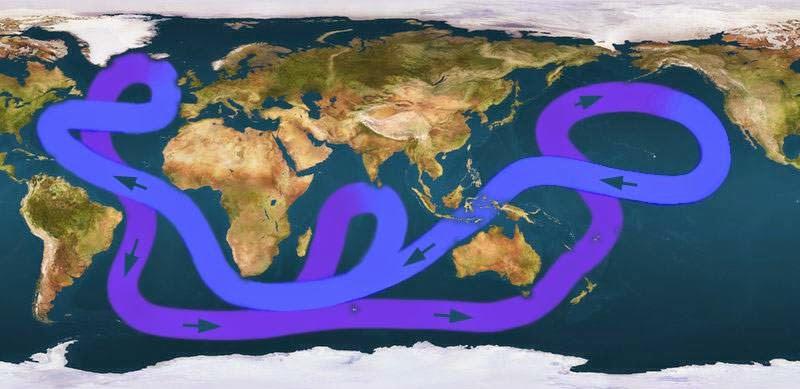 Transporte de nutrientes en las corrientes marinas