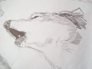 douglas deri, deri, deriart, 2D animation, animation, animacao 2D, cachorra, cachorro, cachorro cartoon, cartoon, cartoon dog, cartoon pig, cartoon wolf, cartoon wolf warrior, cartooning, desenho, desenhos, draw, drawing, guerreiro, lobo, pig, sketch, sketchbook