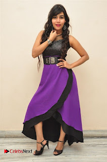 Telugu Actress Rachana Smith Stills at Money is Honey Audio Release  0059.jpg
