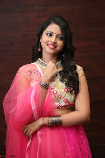 Geethanjali sizzles in Pink at Mixture Potlam Movie Audio Launch 044.JPG