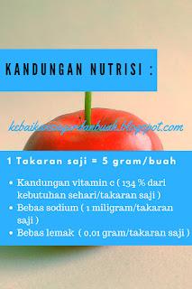 Kandungan nutrisi Acerola