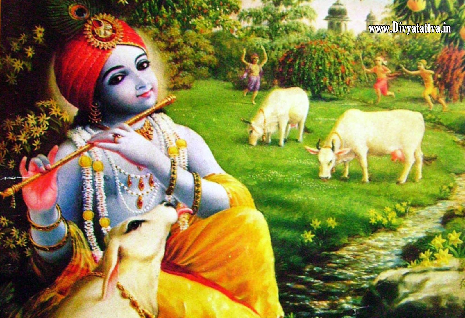krishna gwala radha god hindu spiritual hinduism cow mathura vrindavan www.divyatattva.in