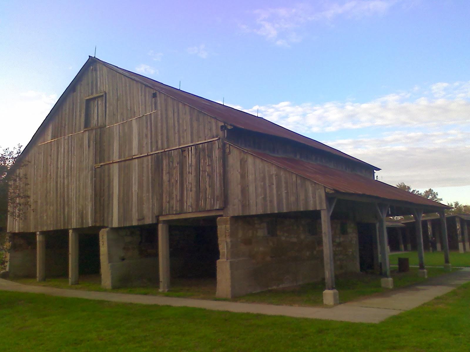 Amish Horses Amana Colonies