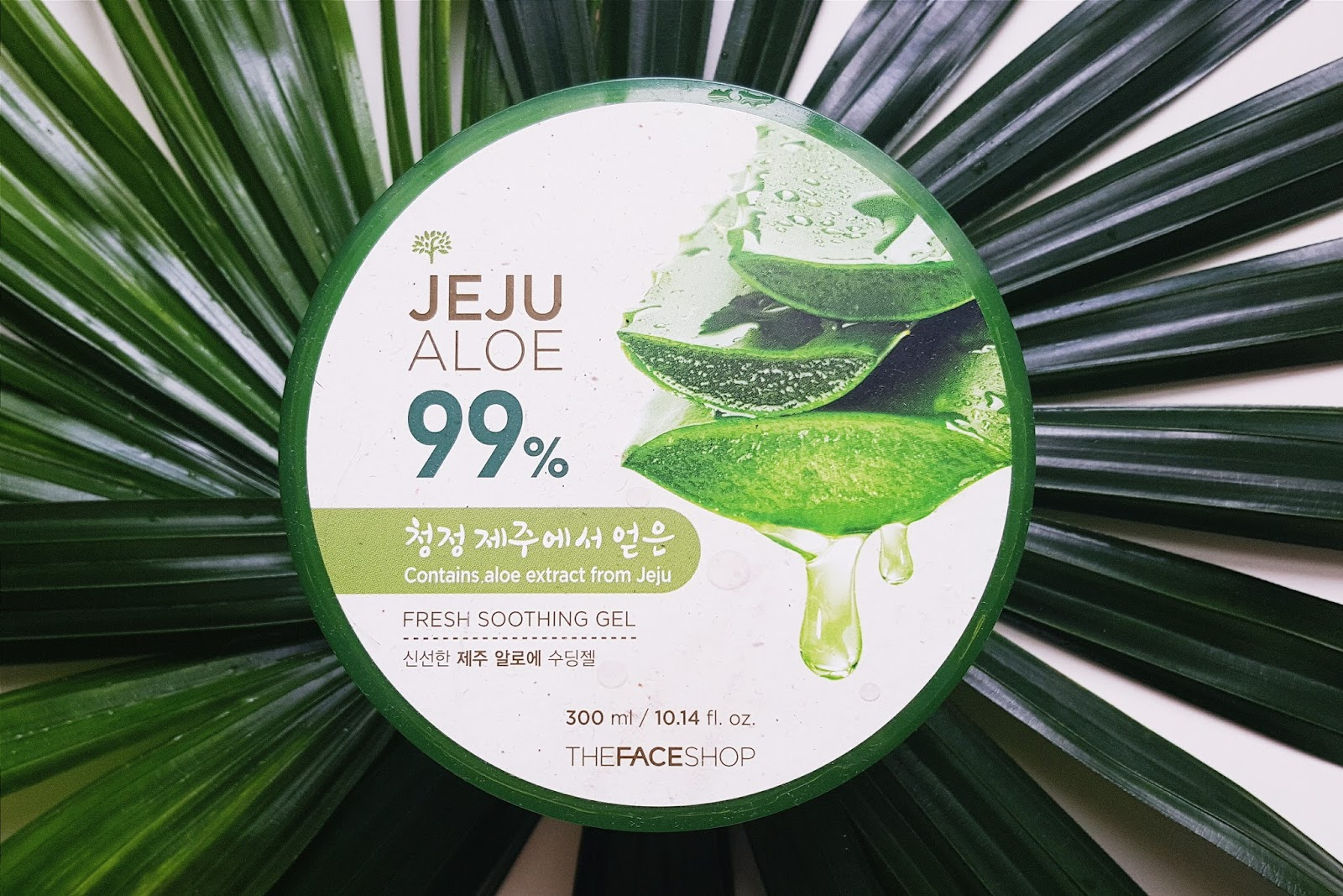 the face shop jeju aloe 99 fresh soothing gel review fishmeatdie. Black Bedroom Furniture Sets. Home Design Ideas