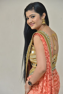 Akshitha Saree Pics at Prasnistha Movie First Look Launch Press Meet