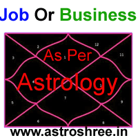 Service or business as per as per astrology, which is better business or  job as per horoscope, birth chart reading for right career.