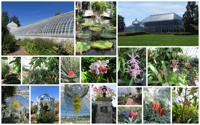 Fun things to do in Pittsburgh - Phipps Botanical Gardens and Conservatory