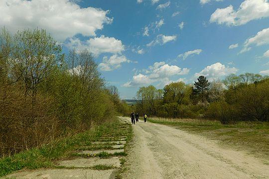 Droga w dolinie Płonki.