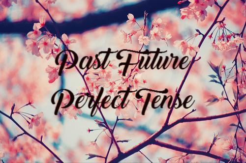 Materi Rumus Dan Contoh Kalimat Past Future Perfect Tense Jagoan