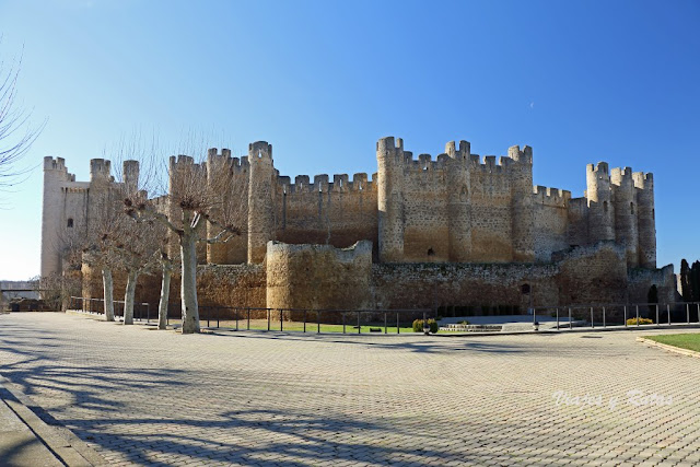 Castillo de Coyanza, Valencia de Don Juan, León
