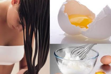 Cara Melebatkan Rambut Dengan Telur Yang Diramu Dengan Materi Lain