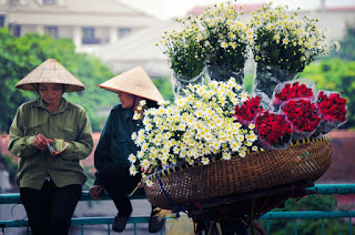Charm of flower bicycle along Hanoi street 1