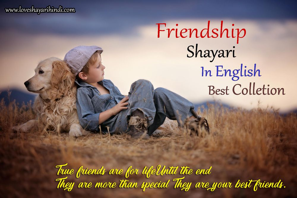 Best Friendship Shayari, Status, Message in English Colletion