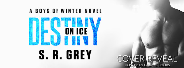 Diane's Book Blog: Destiny On Ice By S.R. Grey Cover