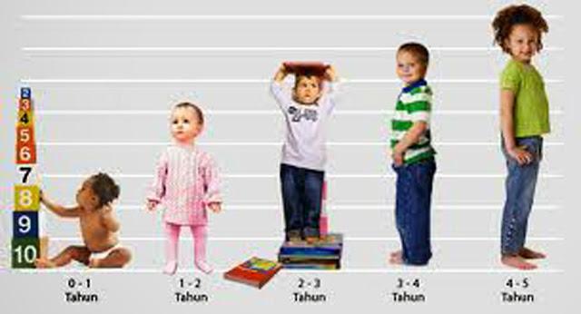 tahapan usia perkembangan anak