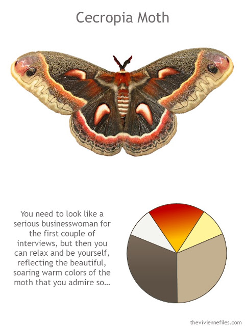 Cecropia moth with style guidelines and color palette
