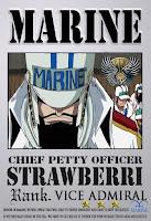 http://pirateonepiece.blogspot.com/2010/05/vice-admiral-strawberry.html