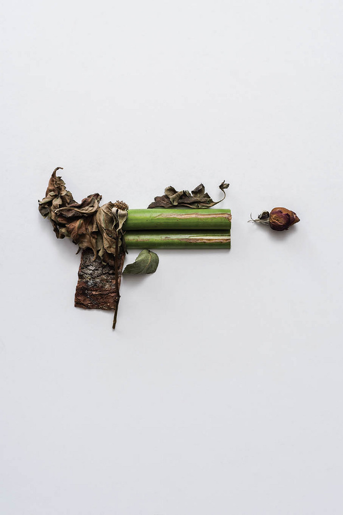 Harmless Weapons Sonia Rentsch