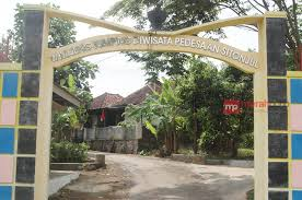 Nikmati Wisata Keluarga di Daerah Kuningan, Wisata Desa Sitonjul