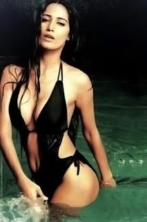 6-Poonam Pandey in bikini