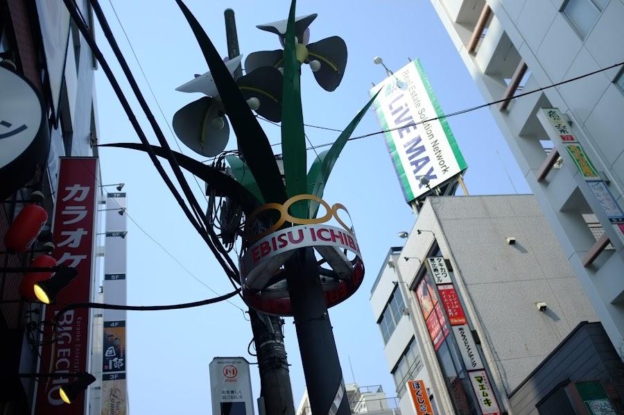 Shibuya snapshots