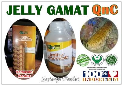 Produk Jelly Gamat QnC Asli