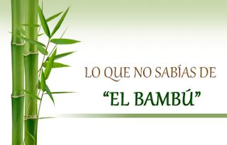 Par de bambús verdes