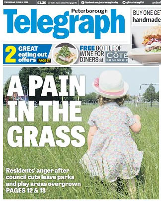 Headline reads A Pain in the Grass