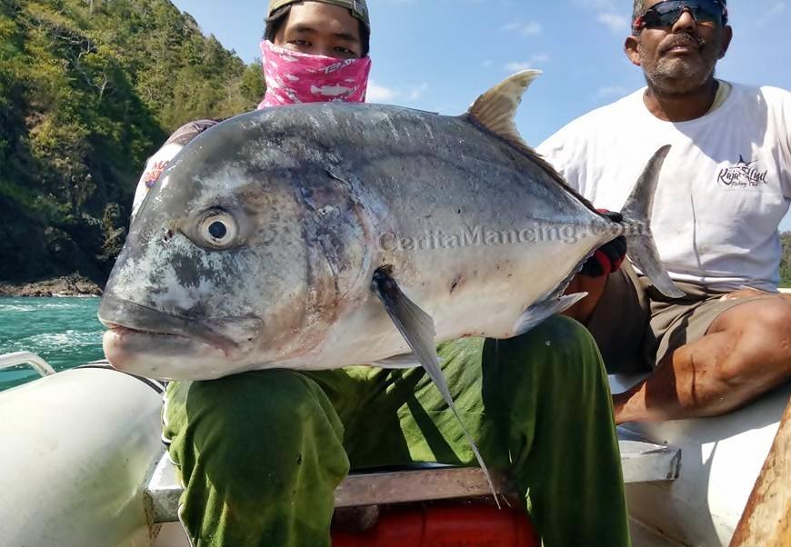 Fight Seru Strike Mama GT Kuwe Gerong Di Spot Pantai Selatan Sumba Tengah
