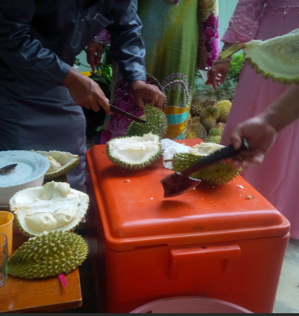 durian, durian fruit season, durian fruit, the king of fruits, food, Malaysian fruits, tropical fruits