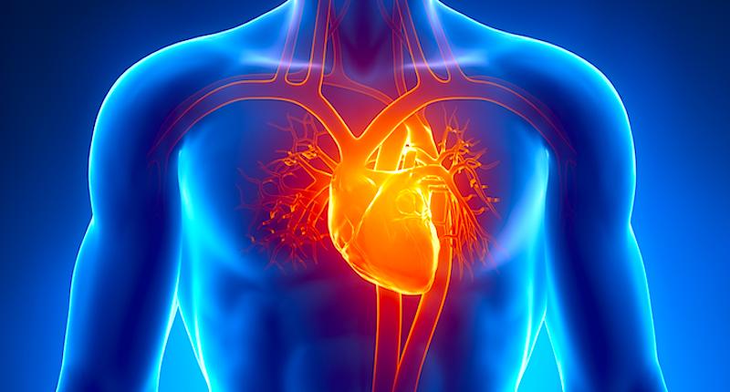 Evite doenças cardíacas com esse estilo de vida saudável