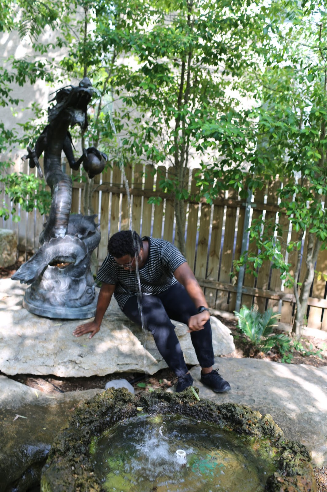 Dragon Park; Hidden Gems in Dallas: #OnlyLocalsKnow
