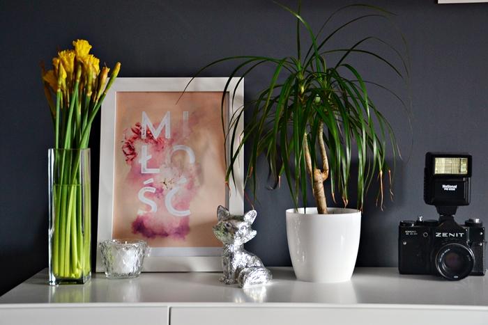 dom, DIY, obrazek, żonkile, wiosna, inspiracje, lis, świeczka, aparat, kwiatek, miłość, obraz, ramka, pomysł