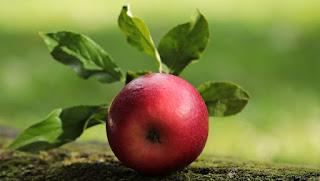 أفضل الفواكه لحرق الدهون وخساره الوزن