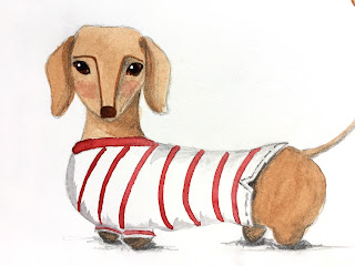 Dachshund wearing a red Breton top illustration in watercolor and pencil - by Amy Lamp