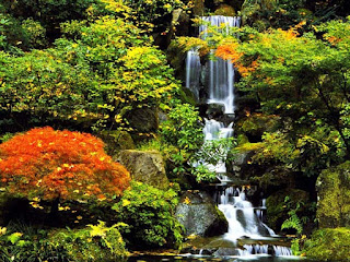 الحديقة اليابانية المذهلة أمريكا japanesegarden5.jpg