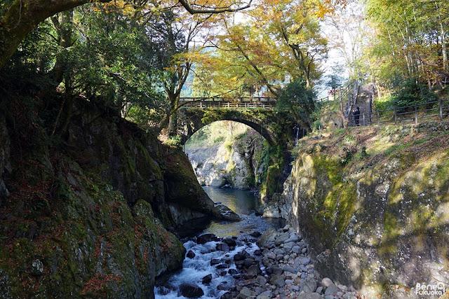 11月に中津の耶馬渓に行ってきた